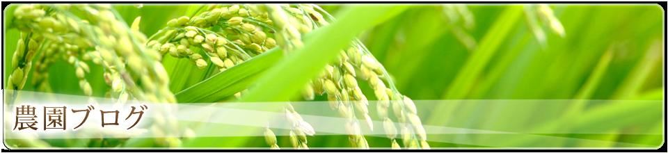 農園ブログ